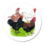 Heavy Breed Roosters Round Car Magnet