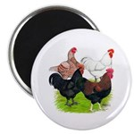"""Heavy Breed Roosters 2.25"""" Magnet (10 pack)"""