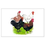 Heavy Breed Roosters Large Poster