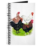 Heavy Breed Roosters Journal