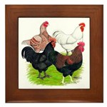 Heavy Breed Roosters Framed Tile