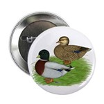 "Grey Call Ducks 2.25"" Button (10 pack)"