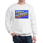 Fort Custer Michigan Sweatshirt