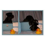 Black Mini Schnauzer Bath Decal