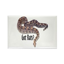 Snake Boa2 Got Rats Rectangle Magnet (10 pack)