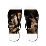 King of the Jungle Flip Flops
