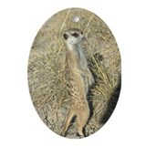 Meerket Sentry Oval Ornament