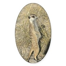 Oval Sticker of a meerkat on duty