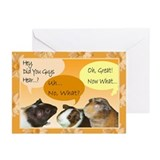 Piggies Celebration Greeting Cards (Pk of 10)