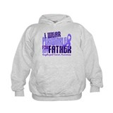 I Wear Periwinkle 6.4 Esophageal Cancer Hoody