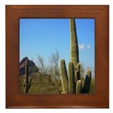 Cool Ahwatukee Framed Tile