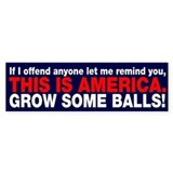 This is America Bumper Sticker