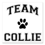 Team Collie Square Car Magnet 3