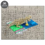 Yoga Spiny the Lizard Puzzle