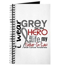 Hero in Life 2 Brain Cancer Journal