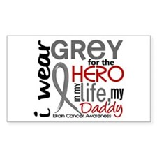 Hero in Life 2 Brain Cancer Decal