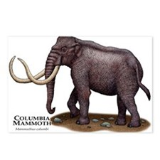 Columbia Mammoth Postcards (Package of 8)