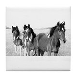 Ponies Jennifer Fox Art Tile Coaster