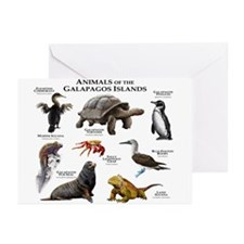 Animals of the Galapagos Islands Greeting Cards (P