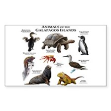 Animals of the Galapagos Islands Decal