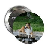 "Sheltie Button ""Portrait Of A Rescue"""