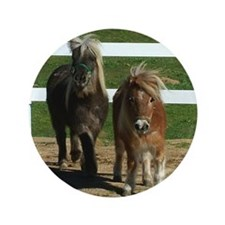 "Cute Miniature Horses 3.5"" Button (100 pack)"