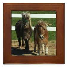 Cute Miniature Horses Framed Tile