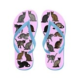 Cats On Pink Flip Flops
