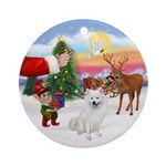 Treat for an Amer Eskimo Dog Ornament (Round)