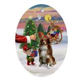 Treat for an Australian Shep (rw) Ornament (Oval)