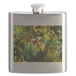 .yellow oncidium. Flask
