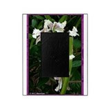 Orchids! Flower photo! Picture Frame