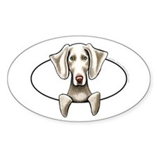 Weimaraner Peeking Bumper Decal
