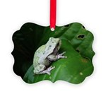 treefrog III Picture Ornament