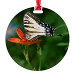 .swallowtail on candy lily. Round Ornament