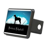 nightsky.png Hitch Cover