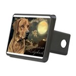 portrait5.png Rectangular Hitch Cover