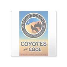 """""""Coyotes are Cool"""" Square Sticker Decal"""