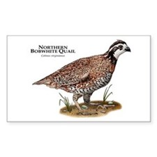 Northern Bobwhite Quail Decal