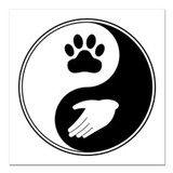 "Universal Animal Rights Square Car Magnet 3"" x 3"""
