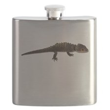 FIN-red-eye-crocodile-skink.png Flask