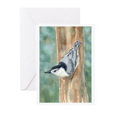 Nuthatch Greeting Cards (Pk of 10)