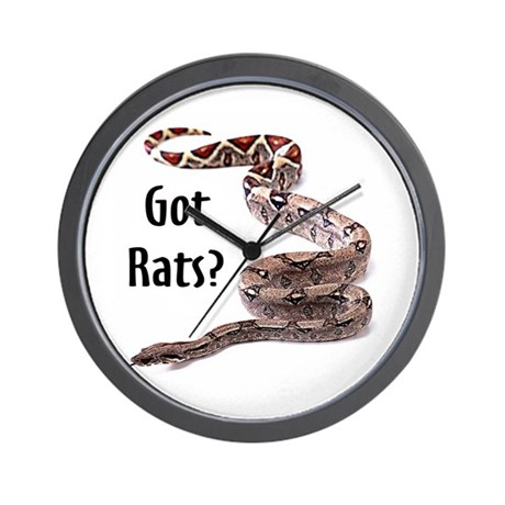 Snake Boa Got Rats Wall Clock
