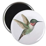 "Hummingbird 2.25"" Magnet (10 pack)"