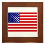 USA flag Framed Tile