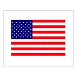 USA flag Small Poster