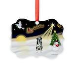 Night Flight/Catahoula Picture Ornament