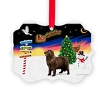 XmasSigns/Newfie Picture Ornament