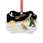 Night Flight/Pomeranian Picture Ornament
