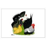 Japanese Bantam Group Large Poster